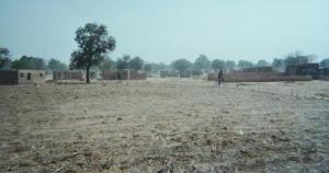 Vus de l'école, quelques champs de mil après la récolte.
